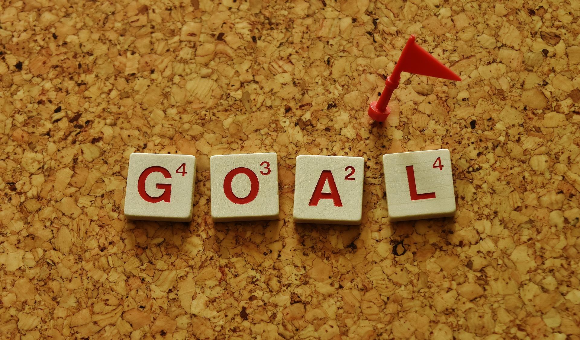 doelen - in het leven