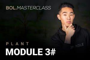Module 3 - Bol Masterclass